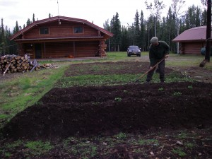 Nate, the master gardener in Tok, Alaska