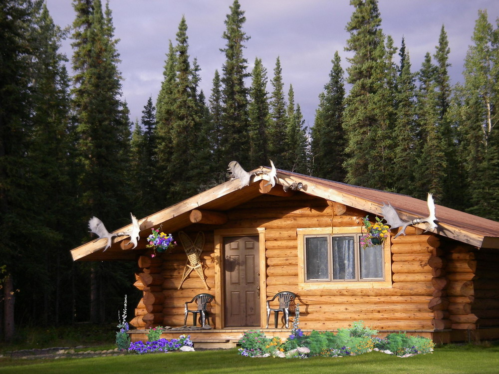 Cloudberry cabin b b cabin style bed and breakfast for Alaska cottage